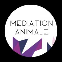 Mediation animale 8